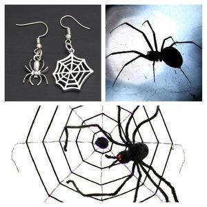 Silver Web and Spider Earrings